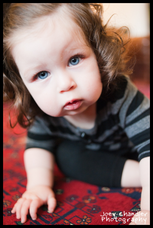 Crawling Baby girl with blue eyes and big rosy cheeks - San Francisco Baby Photographer