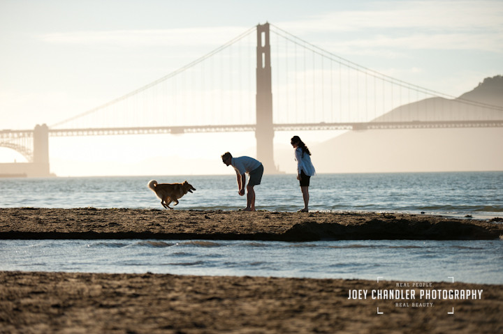 Couple playing with their dog at San Francisco's Crissy Field near the Golden Gate Bridge- San Francisco engagement and wedding photographer Joey Chandler