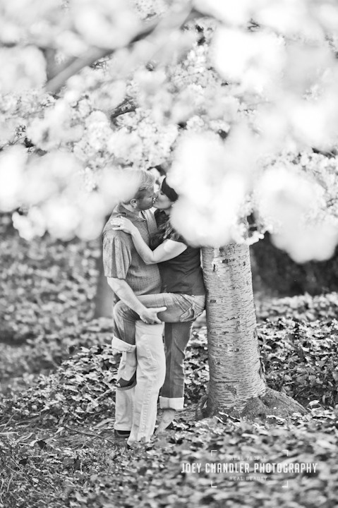 Couple kissing passionately under a cherry tree near the Lyon St Stairs- San Francisco engagement and wedding photographer Joey Chandler