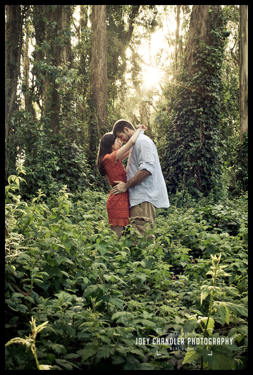 Engagement Photograph of a tender moment in San Francisco's Presidio