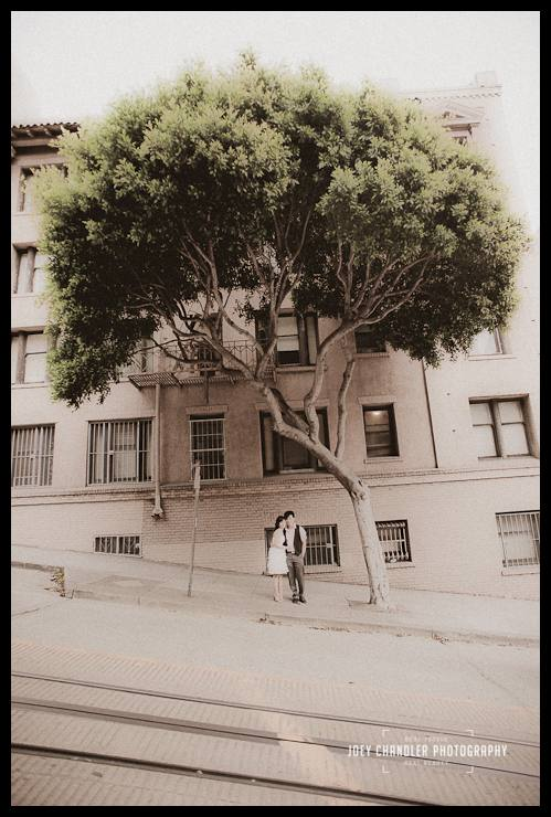 An engaged couple standing below a tree in San Francisco